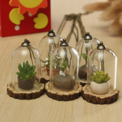 Creative Plexiglas Grass Resin Small Pendant Bottle With Necklace