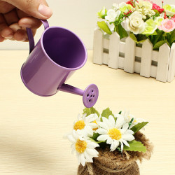 Mini Flower Tin Garden Bucket Tin box Photo Props