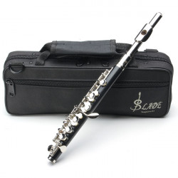 LADE ABS Pipe Silver C Tone Piccolo with Cloth Case