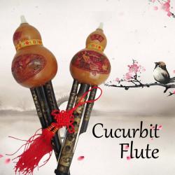 Natural Bamboo Gourd Cucurbit Flute C Tone With Case Ethnic Instrument