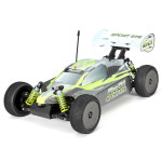 FS Racing 53201 RX-01 1/10 4WD Off Road Brushed Buggy RC Toys & Hobbies
